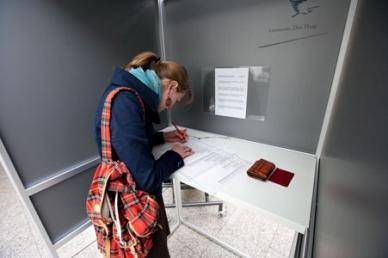 photo of woman voting